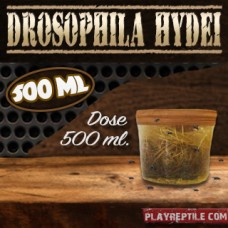 DROSOPHILA HYDEI DOSE DA 500 ML