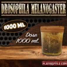 DROSOPHILA MELANOGASTER DOSE DA 1000 ML